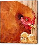 Hen With Chick On Wood Canvas Print