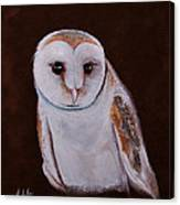 Henry The Owl Canvas Print