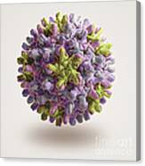 Hepatitis B Virus Canvas Print