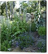 Herb Garden Canvas Print