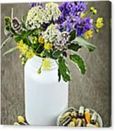 Herbal Medicine And Plants Canvas Print