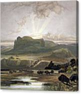 Herd Of Bison On The Upper Missouri Canvas Print