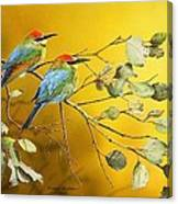 Here Comes The Sun - Rainbow Bee-eaters Canvas Print