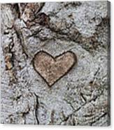 Here Is My Heart Canvas Print