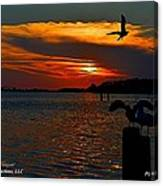 Heron And Seagull Sunset I Mlo Canvas Print