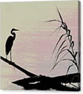 Heron Morning Canvas Print