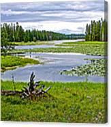 Heron Pond In Grand Teton National Park-wyoming   Canvas Print