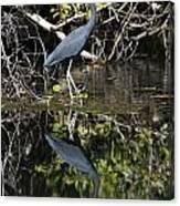 Heron Reflection Canvas Print