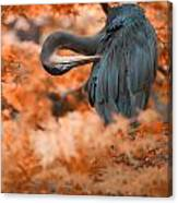 Heron Wonderland V3 Canvas Print