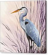 Herons Driftwood Home Canvas Print