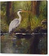 Herons Rest Canvas Print