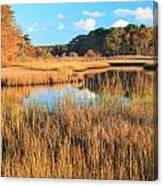 Herring River Cape Cod Marsh Grass Autumn Canvas Print