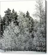 Hersey Lake Under Snow Canvas Print