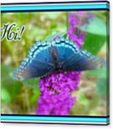 Hi Hello Greeting Card - Red Spotted Purple Butterfly Canvas Print