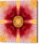 Hibiscus Close-up--kaleidoscope Canvas Print
