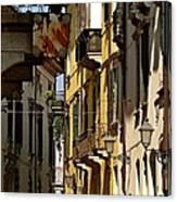 Hidden Away Canvas Print