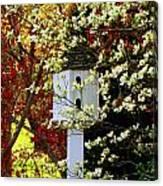 Hidden Bird House Canvas Print