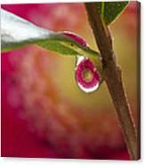 Hidden Droplet Canvas Print