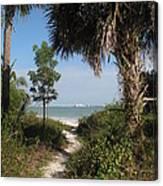 Hidden Path To The Beach Canvas Print