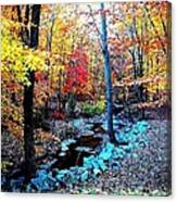 Hidden Stream  Canvas Print