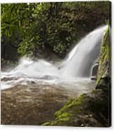 Hidden Waterfall Canvas Print