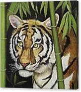 Hiding In The Bamboo Canvas Print