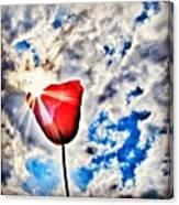 High As A Sky Canvas Print