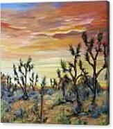 High Desert Joshua Trees Canvas Print