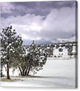 High Desert Snow Canvas Print