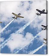 High Flying Five Canvas Print
