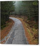 High Mountain Road Canvas Print