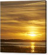 High Tide In The Marsh Canvas Print