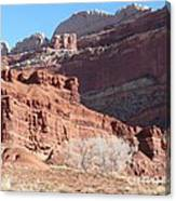 High Wall Of Red Cliffs Canvas Print