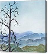 Highland Canvas Print