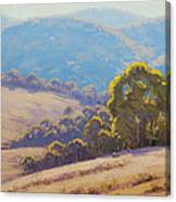Highland Grazing Lithgow Canvas Print