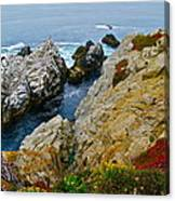 Highway One Canvas Print