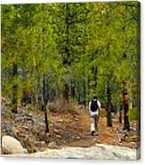 Hike On 2 Canvas Print