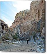 Hiker In Big Painted Canyons Trail In Mecca Hills-ca Canvas Print