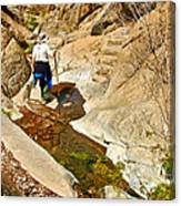 Hiker On Window Trail In Chisos Basin In Big Bend National Park-texas   Canvas Print