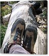 Hiking Boots Canvas Print