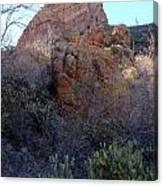Hiking Estes Canyon Canvas Print