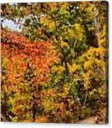 Hiking In Autumn Canvas Print