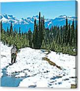 Hiking In Spring In Revelstoke National Park-british Columbia  Canvas Print