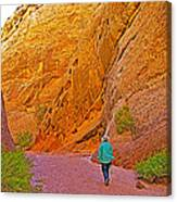 Hiking On Capitol Gorge Pioneer Trail In Capitol Reef National Park-utah Canvas Print