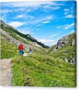 Hiking On Savage River Trail In Denali Np-ak    Canvas Print