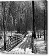 Hiking Trail Bridge With Shadows 3 Bw Canvas Print