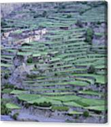 Hill Modified For Agriculture, Tetang Canvas Print