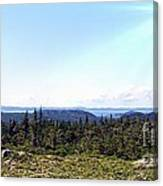 Hill View - Summer - Berry Picking Barrens Canvas Print