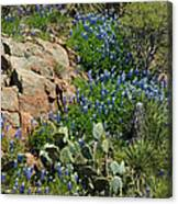 Hillside Blue Canvas Print