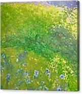 Hillside By Jrr Canvas Print
